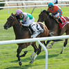Riposte wins the 2014 New York Stakes at Belmont Park.<br /> Coglianese Photos/Adam Mooshian
