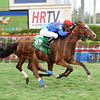 Hey Leroy wins the 2014 Appleton at Gulfstream Park.<br /> Coglianese Photos/Leslie Martin