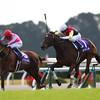 Lachesis wins the Queen Elizabeth II Cup in Japan 11/16/2014.<br /> Masakazu Takahashi Photo