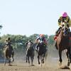 Belle Gallantey wins the 2014 Beldame at Belmont Park.<br /> Coglianese Photos