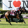 Real Solution wins the 2014 Knob Creek Manhattan Stakes (gr. IT) at Belmont Park.<br /> Coglianese Photos/Chelsea Durand
