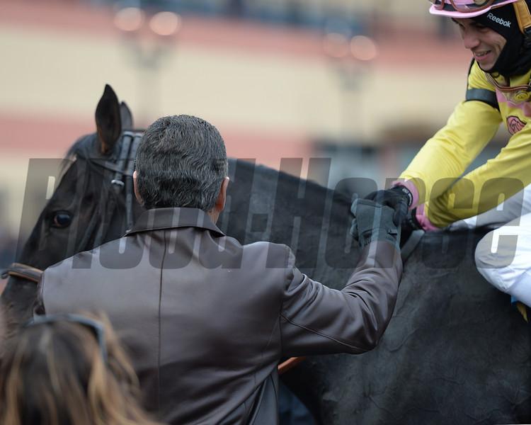 Condo Commando wins the 2014 Demoiselle at Aqueduct.<br /> Coglianese Photos