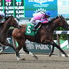 La Verdad wins the Critical Eye Stakes at Belmont Park. <br /> Coglianese Photo