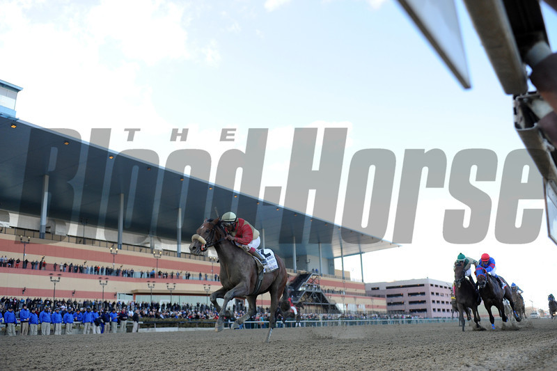 Wicked Strong wins the 2014 Wood Memorial at Aqueduct.<br /> Coglianese Photos