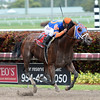 Micromanage wins the 2014 Skip Away at Gulfstream Park.<br /> Coglianese Photos