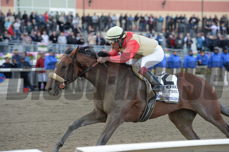 Wicked Strong wins the 2014 Wood Memorial at Aqueduct.<br /> Coglianese Photos/Chelsea Durand