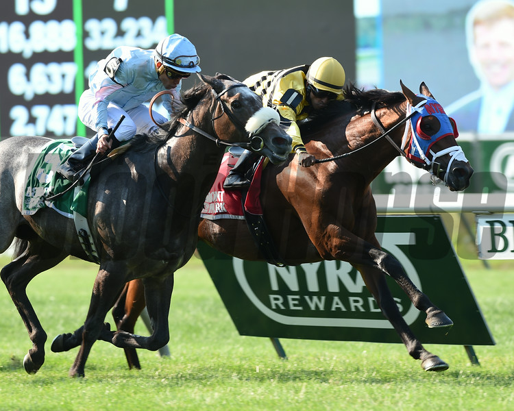 Hangover Kid wins the 2014 Bowling Green at Belmont Park.<br /> Coglianese Photos