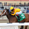 Teen Pauline wins the 2014 Affectionately Stakes.<br /> Coglianese Photos
