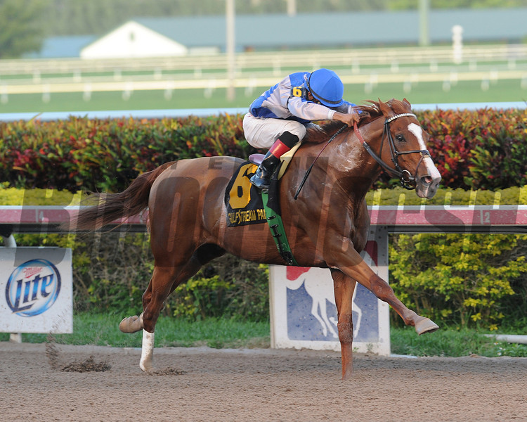 Lea wins the 2014 Hal's Hope.<br /> Coglianese Photos/Lauren King