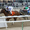 Chasing Bubbles wins the 2014 New York Stallion Series Stakes.<br /> Coglianese Photos