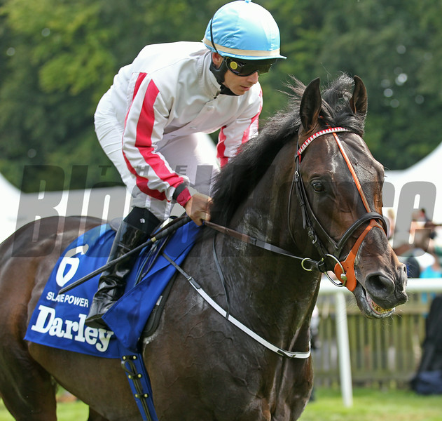 Slade Power wins the 2014 July Cup (Eng-I) at Newmarket.<br /> Trevor Jones Photo
