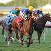 Candy Kitty wins the Ginger Brew Stakes.<br /> Coglianese Photos/Lauren King