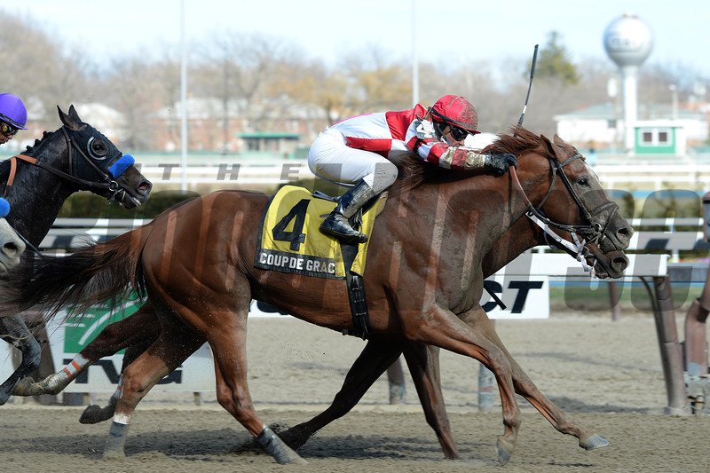 Coup de Grace wins the 2014 Bay Shore Stakes at Aqueduct.<br /> Coglianese Photos