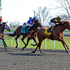 Caption: Judy the Beauty with John Velazquez takes the lead midstretch and goes on to win the Madison (gr. I) by 2 1/2 lengths. <br /> Undercard stakes at Keeneland near Lexington, Ky., on April 12, 2014.<br /> image7116<br /> Photo by Anne M. Eberhardt
