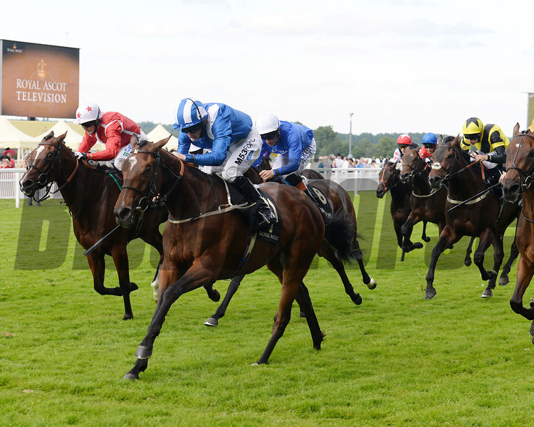 Mutella, Paul Hanagan up, wins the Sandringham Handicap Stakes, Royal Ascot, Ascot Race Course, England, 6/18/14 photo by Mathea Kelley