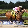 Money'soncharlotte wins the 2014 Hut Hut Stakes at Gulfstream Park West.<br /> Coglianese Photos/Leslie Martin