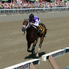 Competitive Edge wins the Hopeful Stakes at Saratoga 9/1/2014.<br /> Coglianese Photos/Chelsea Durand