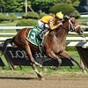 Cavorting wins the Adirondack Stakes at Saratoga 8/10/2014.<br /> Coglianese Photos