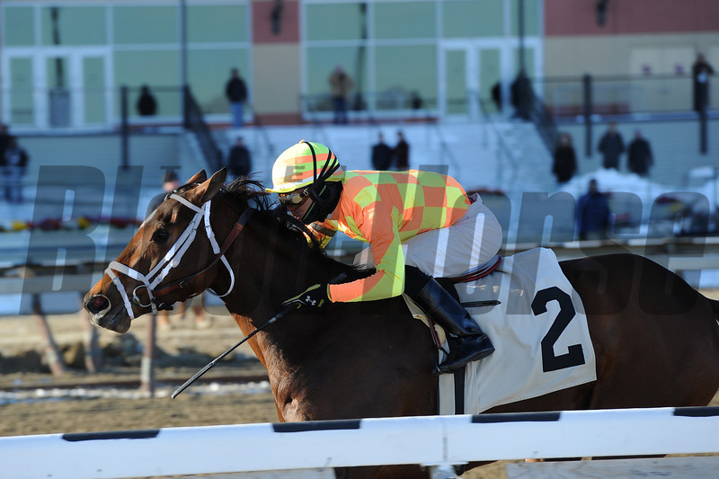 Fierce Boots wins the 2014 Busanda Stakes.<br /> Coglianese Photos