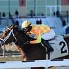 Fierce Boots wins the 2014 Busanda Stakes.<br /> Coglianese Photos