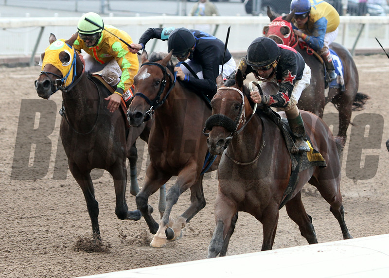 8/2/2014  -  Four Leaf Chief (right) with Gerard Melancon aboard runs away from Union Builder (center) who finished second and Smudge (left) who placed third to capture the 4th running of the Louisiana Cup Juvenile Stakes at Louisiana Downs.  Hodges Photography / Lynn Roberts