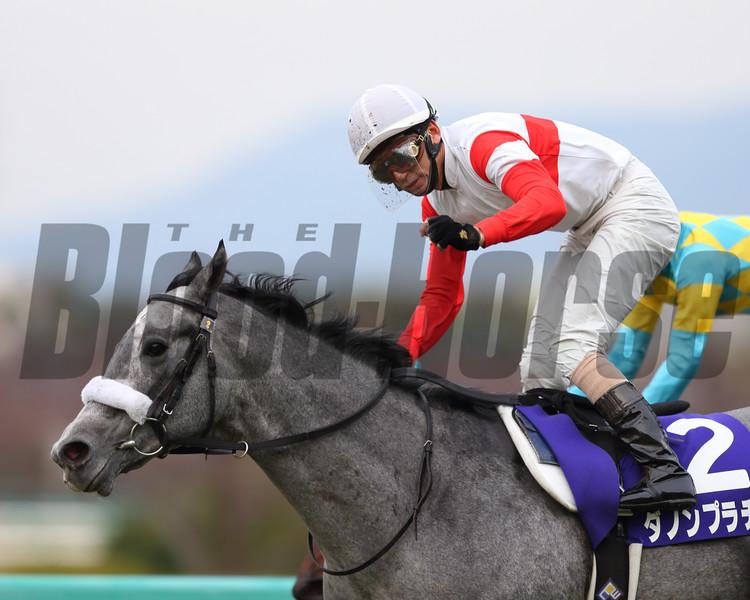 Danon Platina wins the Asahi Hai Futurity Stakes Dec. 21, 2014.<br /> Photo by Masakazu Takahashi
