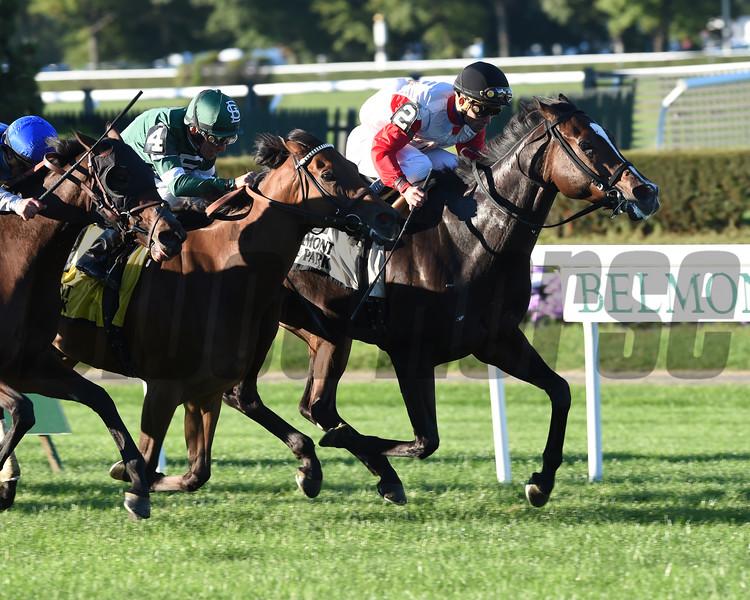 La Tia wins the Athenia Stakes 10/12/2014.<br /> Coglianese Photos