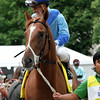 V. E. Day Travers Saratoga Chad B. Harmon