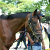 Kid Cruz<br /> Coglianese Photos