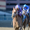 Princess of Sylmar wins the Cat Cay Stakes<br /> Coglianese Photos/Adam Mooshian