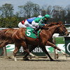 Marriedtothemusic wins the Affirmed Success Stakes at Belmont Park. <br /> Coglianese Photo