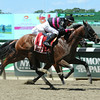 Kid Cruz wins the 2014 Dwyer Stakes at Belmont Park.<br /> Coglianese Photos