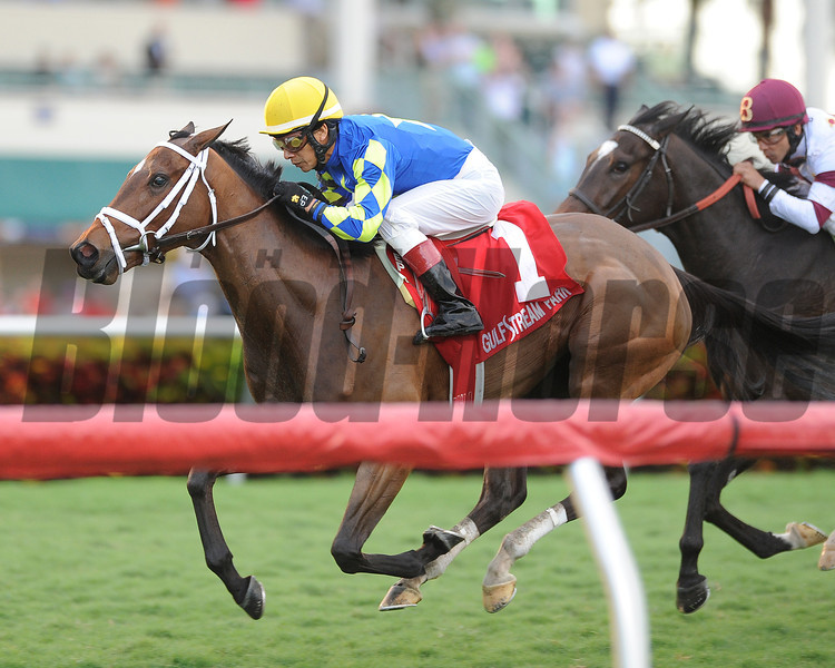 Candy Kitty wins the Ginger Brew Stakes.<br /> Coglianese Photos/Kenny Martin