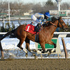 Noble Moon wins the 2014 Jerome Stakes.<br /> Coglianese Photos