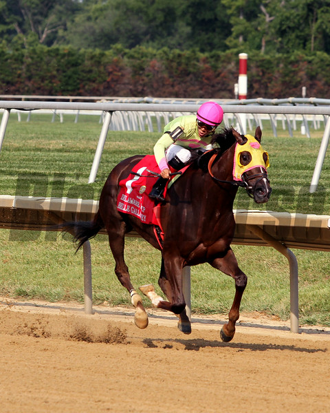 Belle Gallantey with Jose Ortiz win the 77th Running of The Delaware Handicap (GI) at Delaware Park on July 12, 2014 with Princess of Sylmar finishing second.. Photo By: Chad B. Harmon