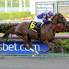 Heart Stealer wins the 2014 Inside Information at Gulfstream Park.<br /> Coglianese Photos/Leslie Martin