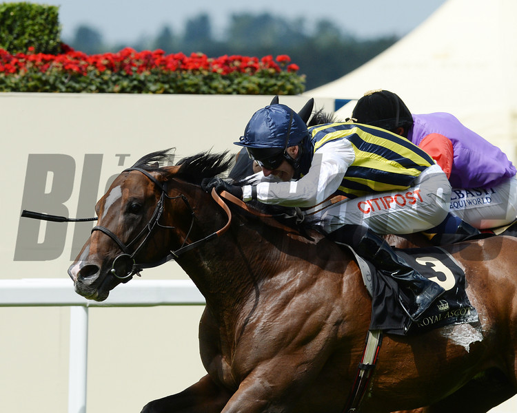 Contributer, George Baker up, wins the Wolferton Handicap Stakes, Royal Ascot, Ascot Race Course, England, 6/20/14 photo by Mathea Kelley