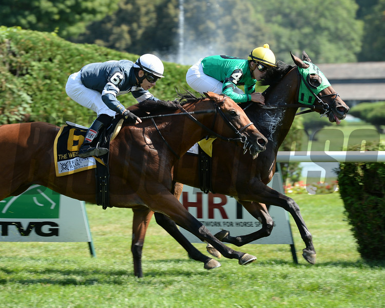 King Kreesa wins the West Point Stakes at Saratoga 8/24/2014.<br /> Coglianese Photos/Chelsea Durand
