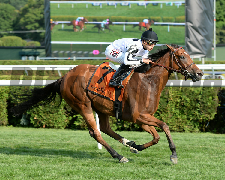 Stars Above Me wins the 2014 Coronation Cup Stakes at Saratoga.<br /> Coglianese Photos