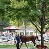 Curalina wins the CCA Oaks at Saratoga July 26, 2015.<br /> Coglianese Photos/Susie Raisher