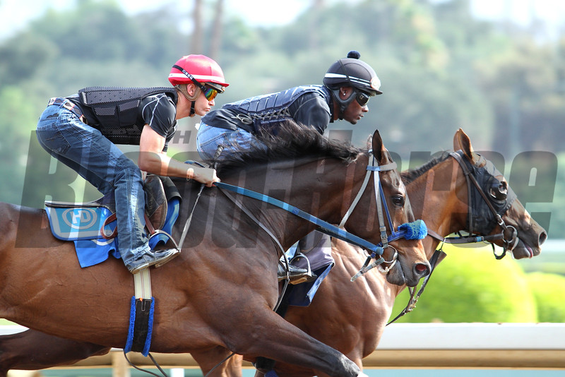Jockey Flavien Prat working the Henry Dominguez trained PAIN AND MISERY at Santa Anita 06.27.15. Photo by Helen Solomon