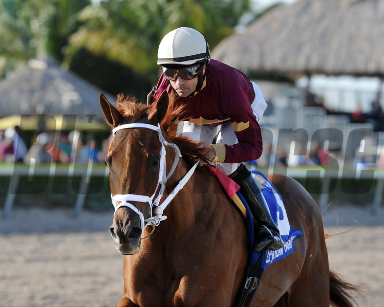 Sheer Drama wins the 2015 Royal Delta Stakes.<br /> Coglianese Photos/Kenny Martin