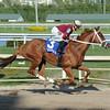 Sheer Drama wins the 2015 Royal Delta Stakes.<br /> <br /> Credit: Coglianese Photos/Leslie Martin