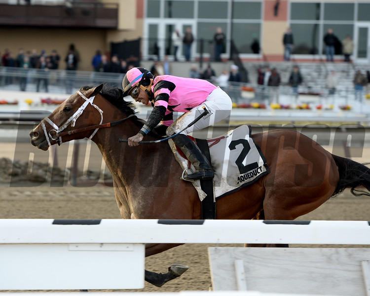 Far From Over wins the 2015 Withers Stakes.<br /> Coglianese Photos/Joe Labozzetta