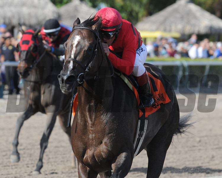 Weekend Hideaway wins the 2015 Florida Sunshine Millions Sprint Stakes at Gulfstream Park.<br /> Coglianese Photos/Kenny Martin