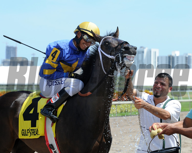 It's High Time wins the 2015 Florida Sire Desert Vixen Stakes.<br /> Coglianese Photos/Natalie Fawkes
