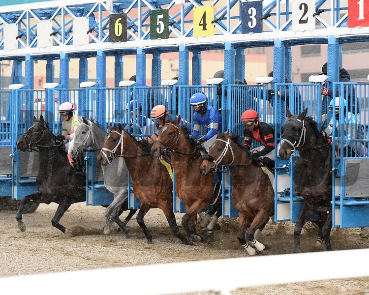 Condo Commando wins the 2015 Busher Stakes.<br /> Coglianese Photos/Joe Labozzetta
