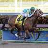 Merry Meadow wins the 2015 Hurricane Bertie at Gulfstream Park.<br /> Coglianese Photos/Lauren King