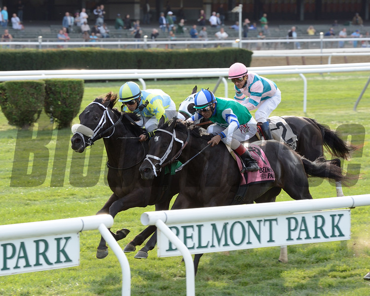 With a strong run while widest of all in the stretch, Matthew Schera's Isotherm proved best in a rousing edition of Belmont Park's Pilgrim Stakes (gr. IIIT) for 2-year-olds. The son of Lonhro edged Azar by a neck who was in between horses with an unlucky Ray's The Bar finishing third along the rail.<br /> Coglianese Photo