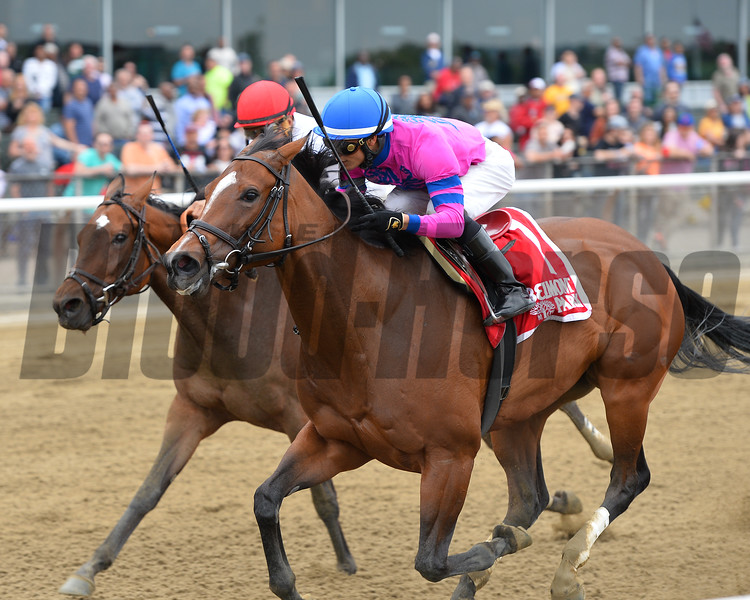 La Verdad wins the 2015 Vagrancy Handicap.<br /> Coglianese Photos/Joe Labozzetta